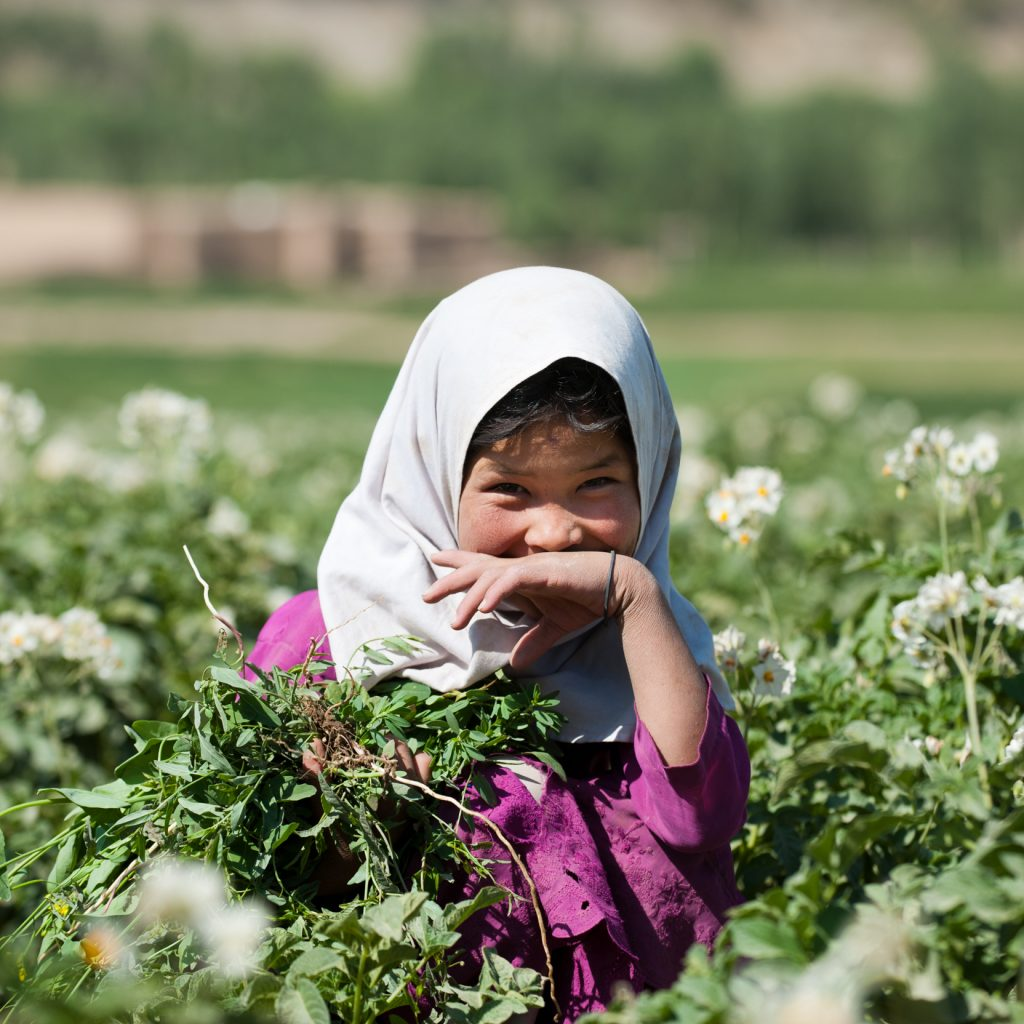 afghanistan-girl-smiling-potato-field