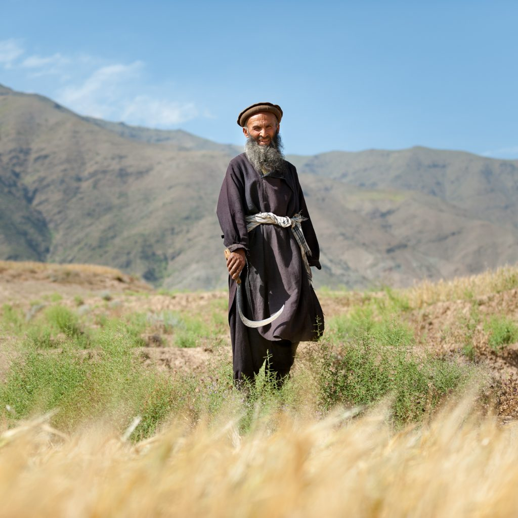 afghanistan-man-grass-mountains